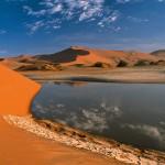 En ciertos oasis el desierto es sólo un espejismo.