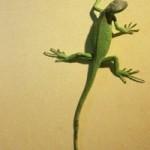 La verdad es el lagarto, deja su cola en nuestros dedos y se marcha, sabiendo muy bien que le crecerá otra enseguida